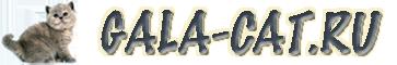 Логотип GALA-CAT